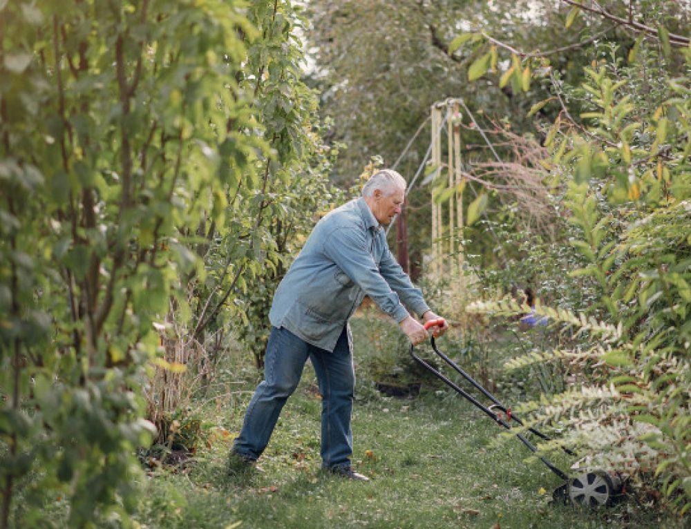 Podstawowe zasady dbania o trawnik